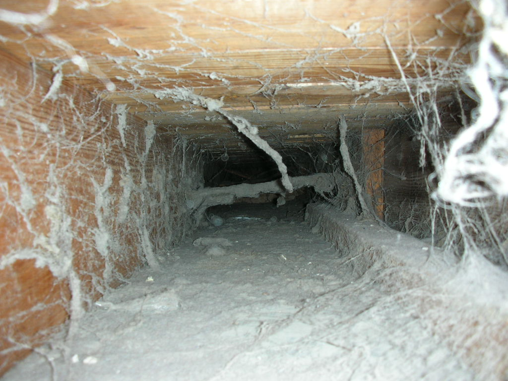 mite_e_ducts_duct_cleaning_91 mite_e_ducts_duct_cleaning_8 mite_e_ducts_duct_cleaning_9 mite_e_ducts_duct_cleaning_91 mite_e_ducts_duct_cleaning_8 - Duct Cleaning Jobs